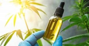CBD oil from the hemp plant